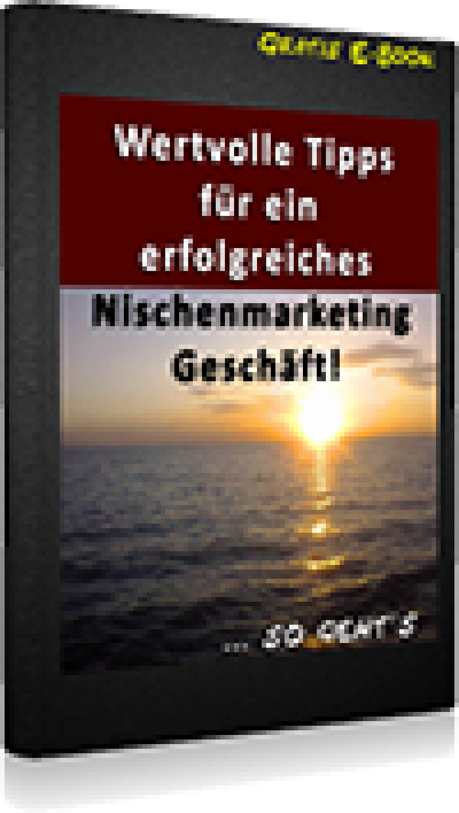 Skenteridis - Marketing-Ebooks-De